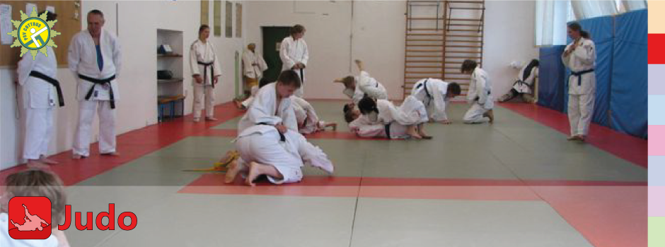 Layer2-judo